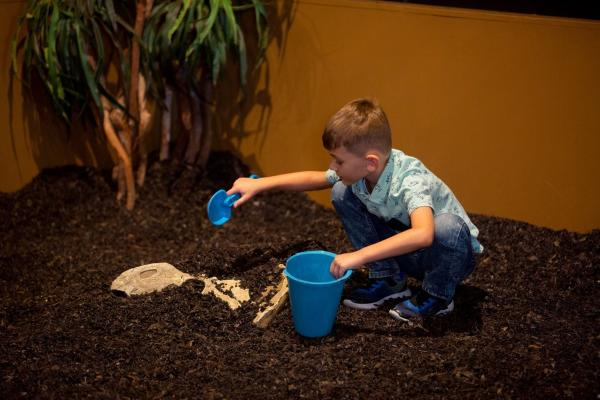 Young boy in the Dig Pit at the Houston Museum of Natural Science at Sugar Land.