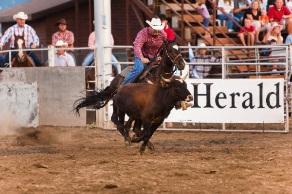 Spanish Fork Rodeo 2