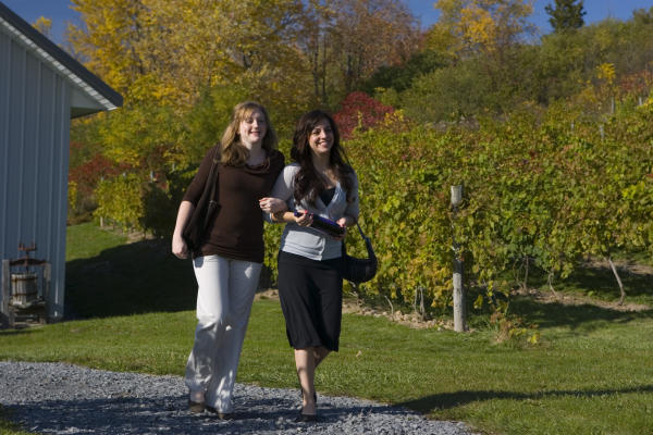 Fall Vineyard Tour in the Finger Lakes