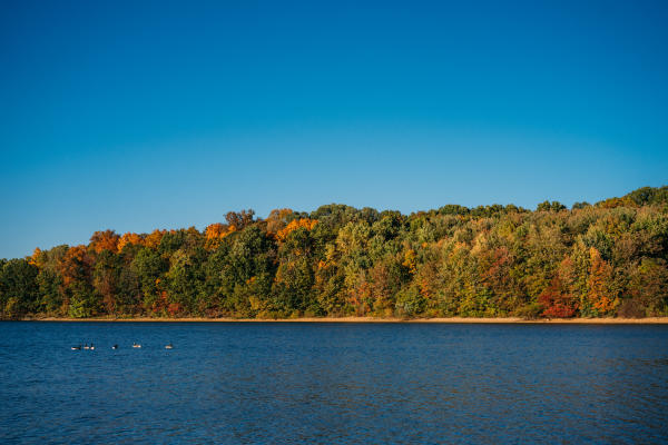 As fall progresses, the changing leaves stand in stark contrast to the blue water of Lake Marburg at Codorus State Park.