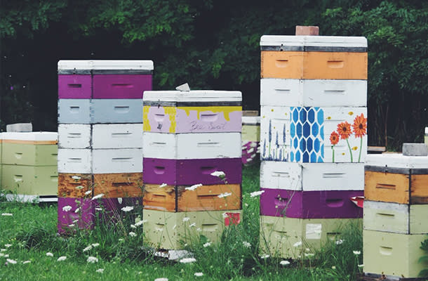 Honey at WILDFLOWERS TEA