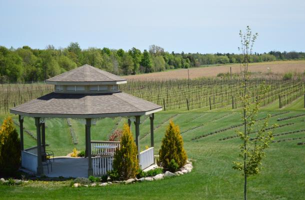 Bonnie Health Estate Winery