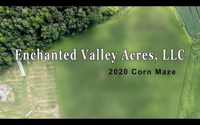 Enchanted Valley Acres - 2020 Corn Maze (Above Pix)