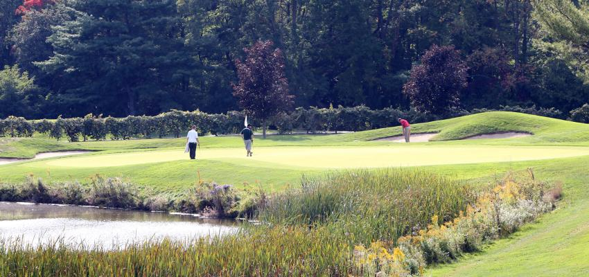 finger-lakes-bristol-harbour-golf-scenic