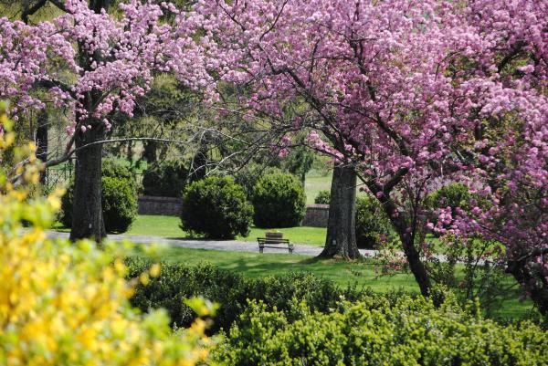 Morven Park Garden in Bloom