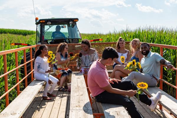 A group takes a wagon ride through fields of sunflowers.