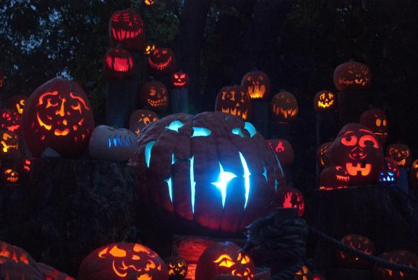 Jack-o-lantern 2015_2