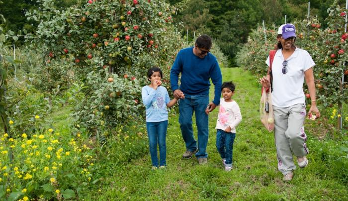 Family in orchard