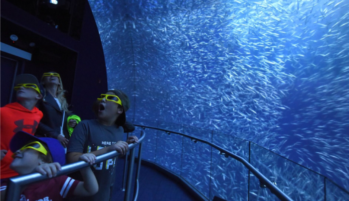 1. National Geographic Encounter: Ocean Odyssey