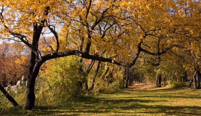 1362_275_Hempstead Lake State Park 01.jpg