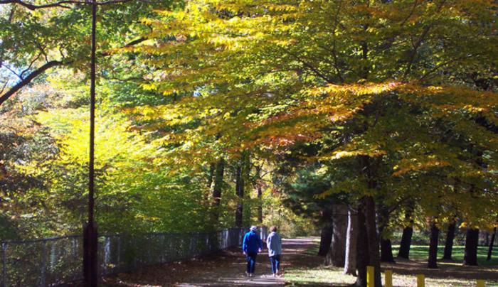 ARVTrail-a couple walking .jpg