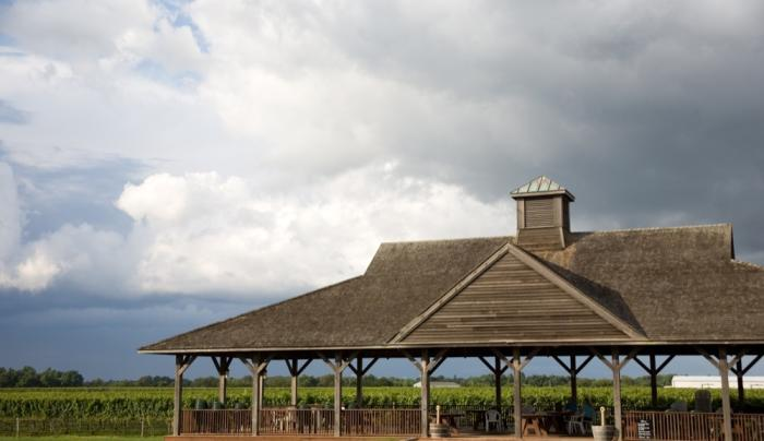 Pindar Vineyards - Photo Courtesy of Pindar Vineyards