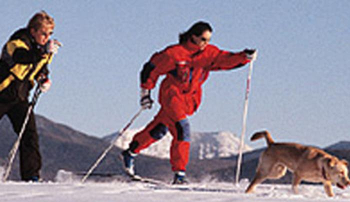 X-C Skiing for I Love NY Listing.jpg