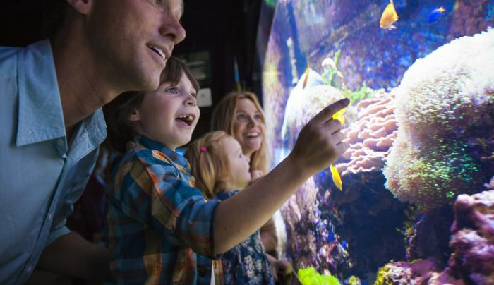 Aquarium of Niagara Family