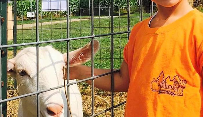 Ellms Family Farm Girl with Goat