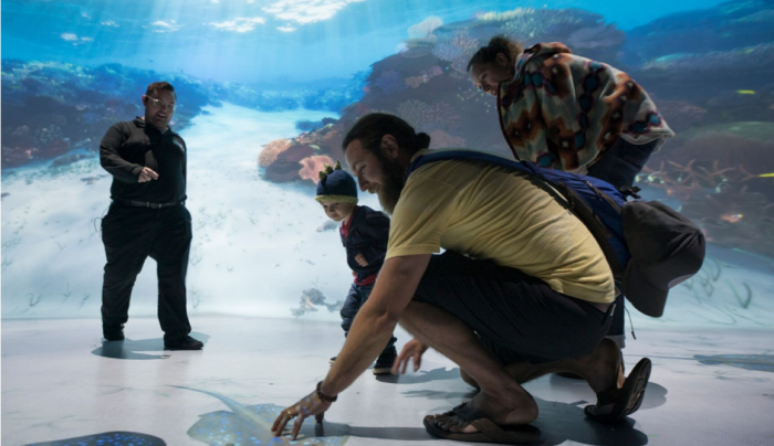 4. National Geographic Encounter: Ocean Odyssey