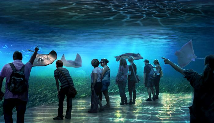 National Geographic Encounter: Ocean Odyssey 4