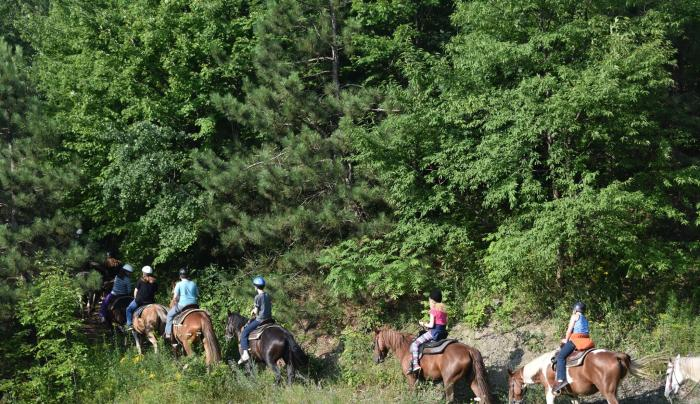 Guided Trail rides at Path of Life Camp in beautiful Broome County