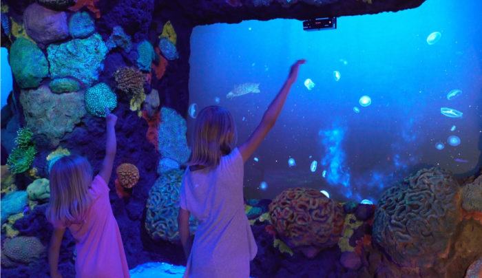 7. National Geographic Encounter: Ocean Odyssey
