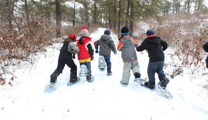 Albany Pine Bush snowshoeing