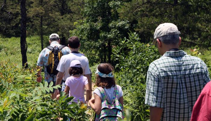 Albany Pine Bush group hike