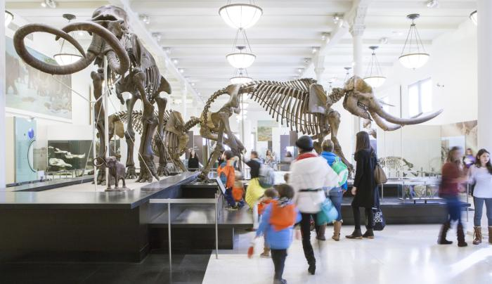 American Museum Of Natural History - Photo by Marley White - Courtesy of NYC & CO