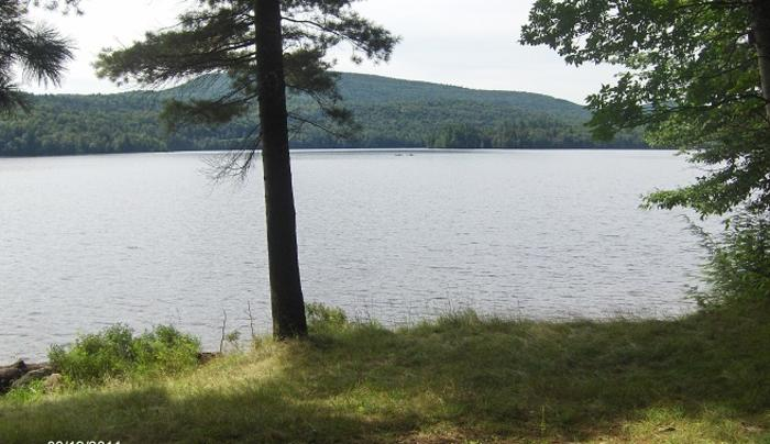 Arnold Lake State Forest