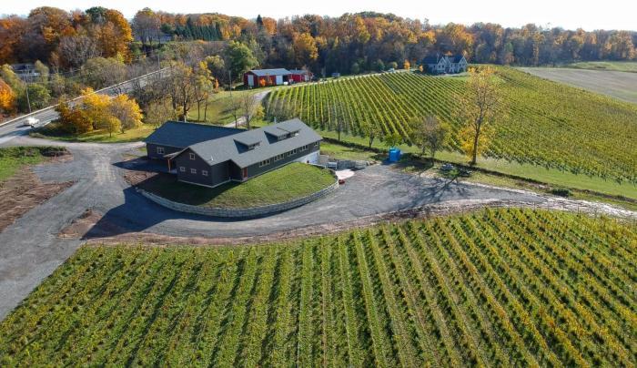 Arrowhead Spring Vineyards