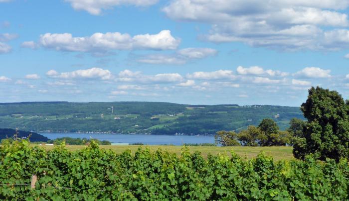 Azure Hill Winery