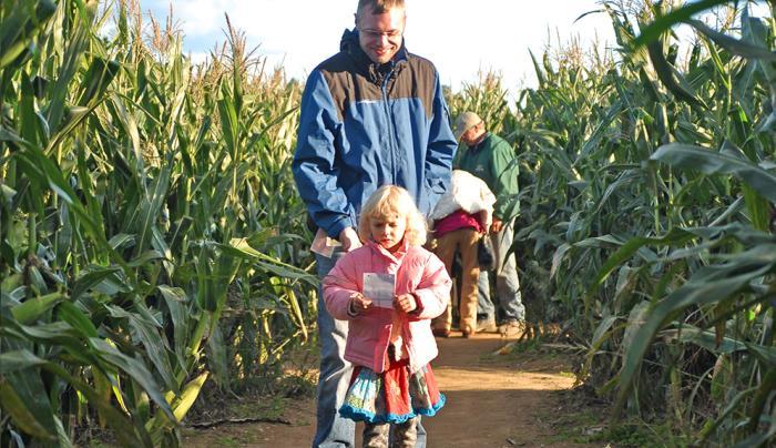 Harbes Corn Maze