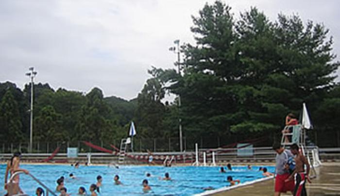 C Morley Park
