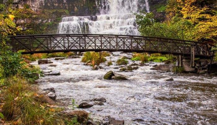 Fall - Chittenango Falls State Park