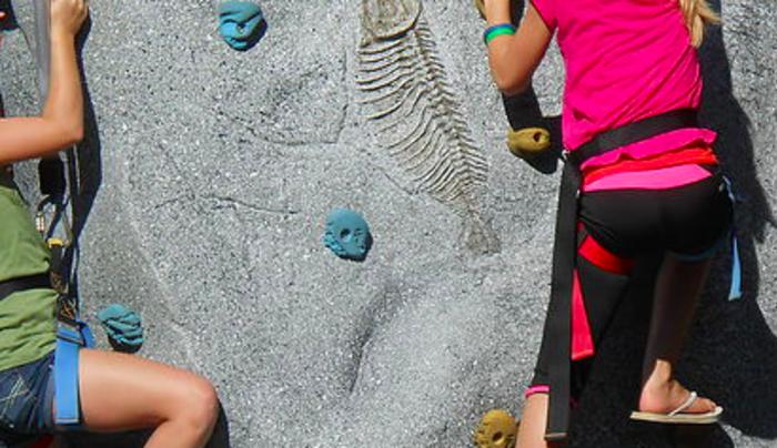 Chuckster's Rock Wall