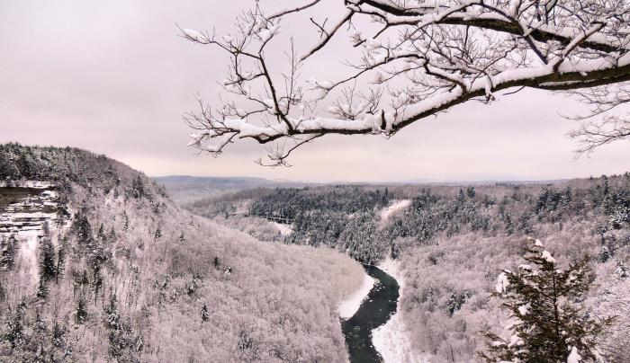 Letchworth State Park, Breeze Photography