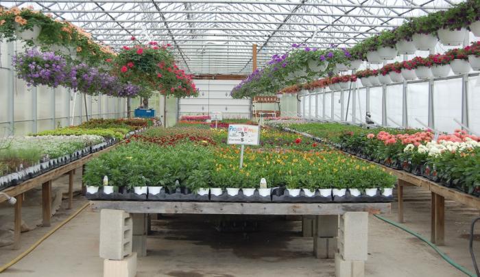 Samascott Garden Market greenhouse