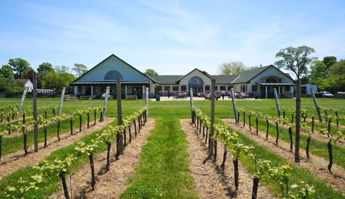 Duck Walk North -  Vineyard and Tasting Room - Photo Courtesy of Duck Walk Vineyards
