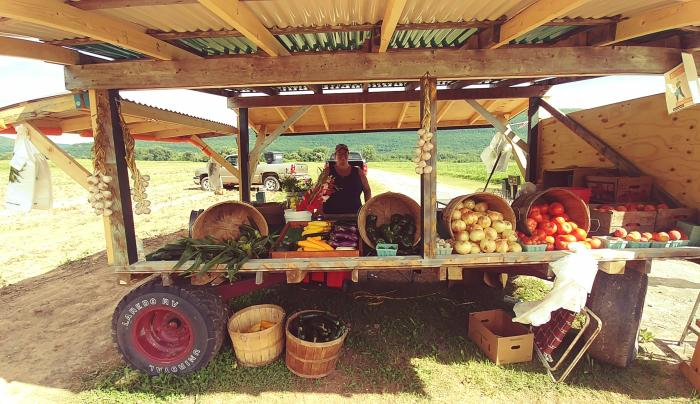 bohringers farm stand