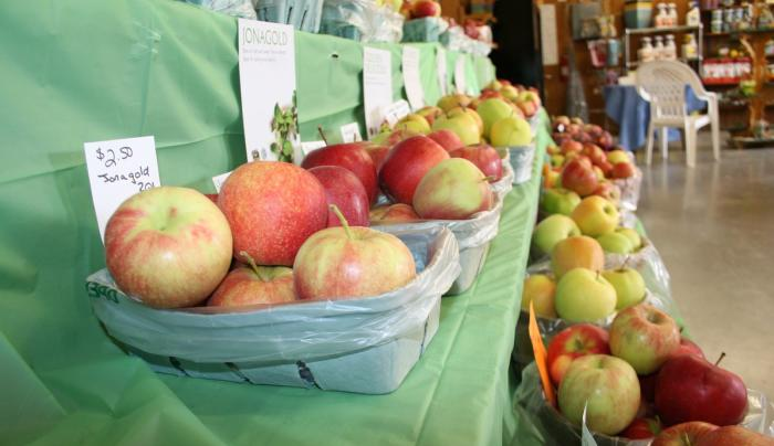 Farm fresh apples inside the market