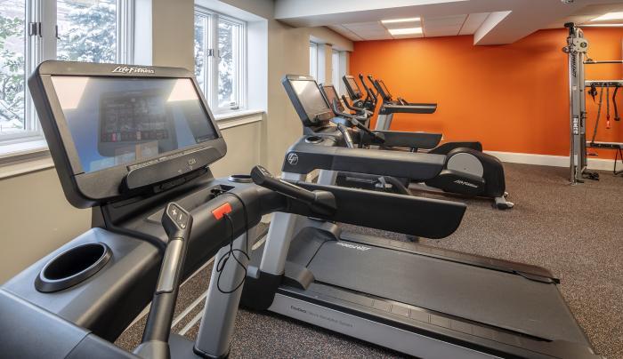 Treadmills with Netflix & HULU