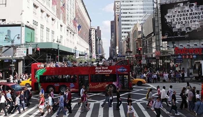 NYS Feed - Gray Line New York