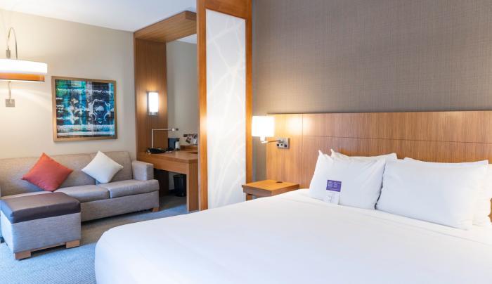 Plush Hyatt Grand Bed