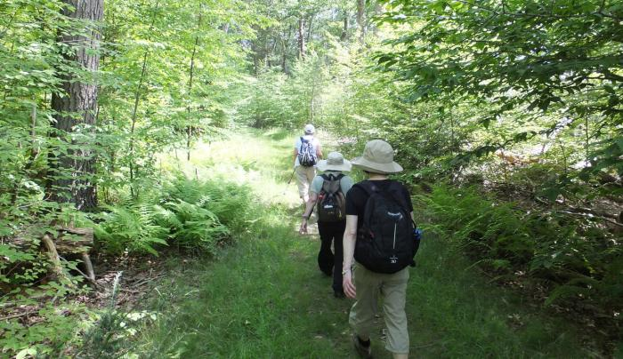 Hiking at Sterling Forest State Park