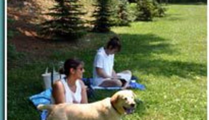 Interlake - relaxing