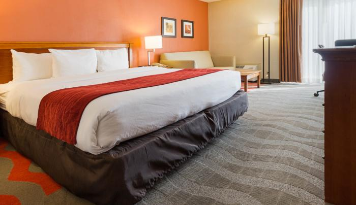Executive King Room - King Bed, Sleeper Sofa, Mini-Fridge