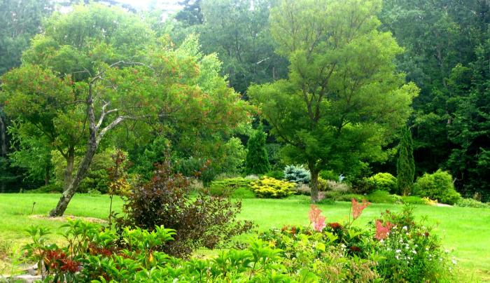 Mtn Top Arboretum