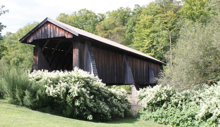 Van Tran Flat Covered Bridge
