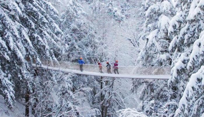 Snowy Bridge Winter Canopy Tour