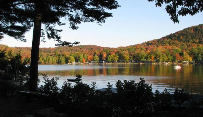 View from Southern Adirondack Pines Fall