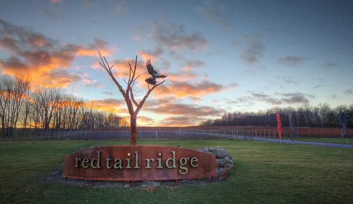 Red Tail Ridge