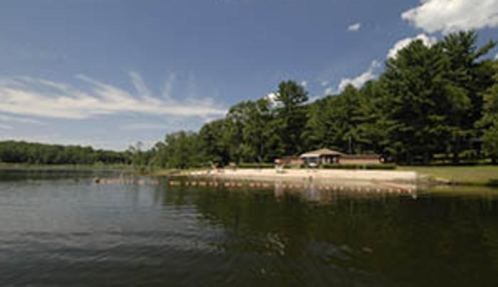 Rudd Pond - beach
